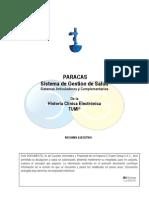 Resumen Ejecutivo Paracas - Hce v1.5