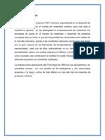 GRUPO IDIMSA S.A (1)
