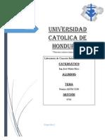 Informe Astm c138