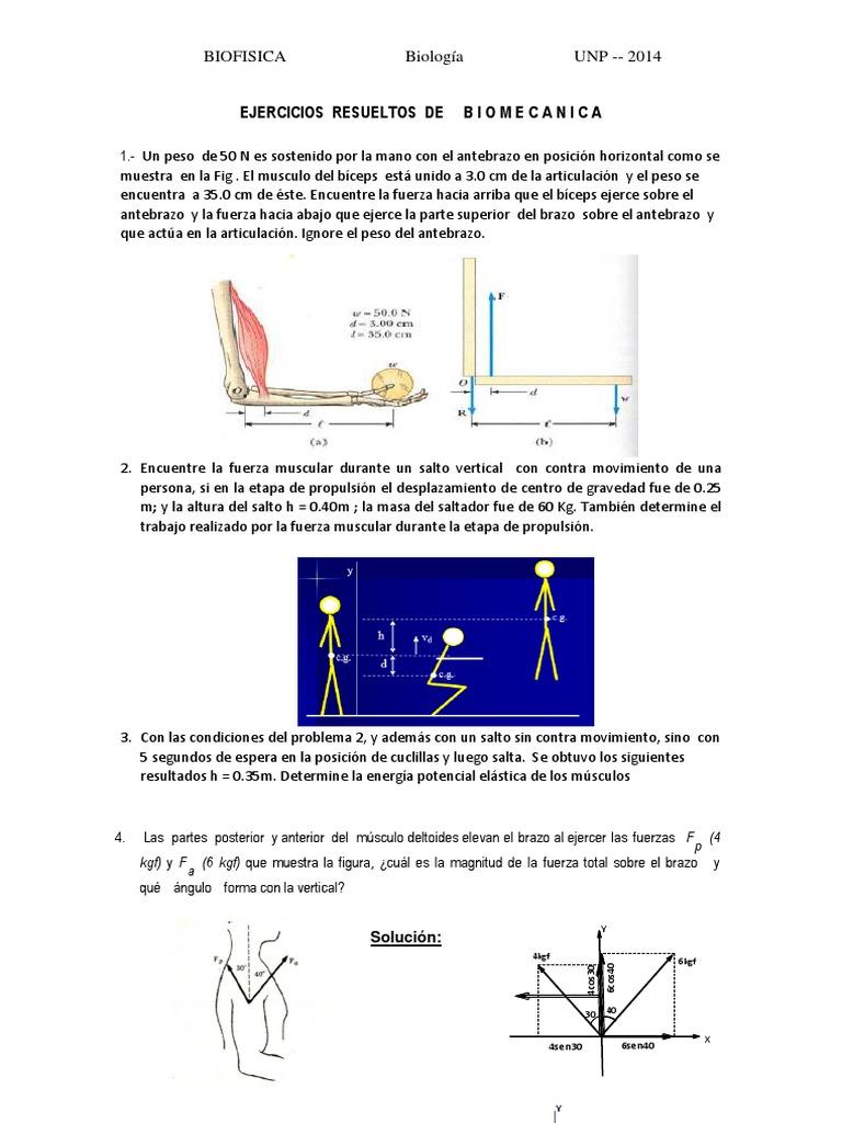 Lujo Diagrama De Los Músculos Del Brazo Modelo - Anatomía de Las ...