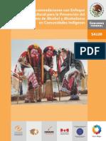 6.Recomendaciones Con Enfoque Intercultural Para La Prevencion Del Consumo de Alcohol Y Alcoholismo en Comunidades Indigenas