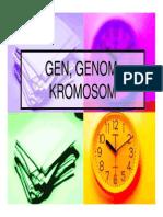 Gen, Genom, Kromosom