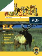 Enormous Elk - September, 2014