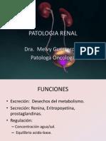 2 Patologia Renal