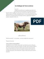 Cómo Entender Los Catálogos de Toros Lecheros