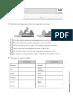 cono_tema2_anaya_refuerzo.pdf