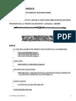 La Novela Picaresca by Various