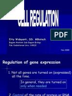 Presentasi Regulasi Sel (021109)