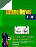 Sis Nervos Varimbunatatita 120316143212 Phpapp01