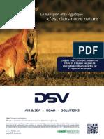 Pub DSV.pdf