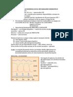 EFECTOS DE LAS HORMONA EN EL METABOLISMO ENERGETICO.docx