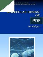 K.1-Molecular Design of Life
