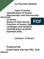 Skeletal System (Sem 1)