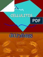 Cellulitis Presentation (Sem 2) Ns3