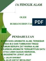 Senyawa Fenolik Alam-1