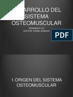 Osteo Muscular