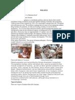 Parasite Disease(Malaria)