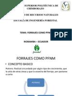 PFNM_FORRAJES