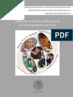 Formulario Completo modificado febrero 2013.pdf