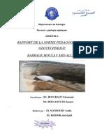 Département de Géologie RAPPORT.pdf
