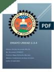 ensayo-2-3-4