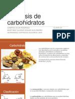 1.Hidrólisis de Carbohidratos