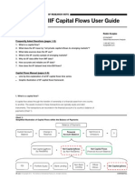 IIF+Capital+Flows+User+Guide