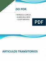 Articulo Transitorio