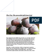 Figs-The Gods  Gift