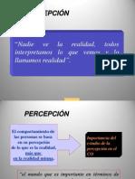 Diapositivas 2.b Percepción