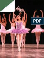 Folclor en Las Danzas