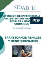 Enfermedades Genitourinarias y Renales