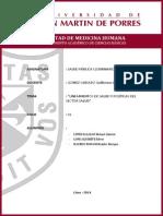 Grupo n01. Lineamientos de Salud y Políticas Del Sector Salud