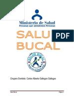 Plan Anual de Actividades de Huancane