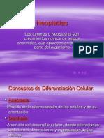 2.- Neoplasias