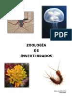 Zoología de Invertebrados
