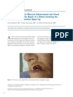 Combined Vestibular Mucosal Advancement and Island Pedicle Flaps for the Repair of a Defect Involving the Cutaneous and Vermilion Upper Lip