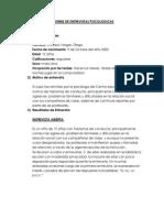 Informe de Entrevistas Psicologicas Clareitano