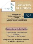 Degradacion de Lipidos Exposicion