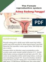 Askep Radang Panggul