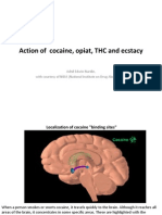 3.Action_of_cocaine,_opiat,_THC_and_ecstacy.ppt