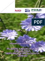 Medicinal Plants From Moldova SmallFile