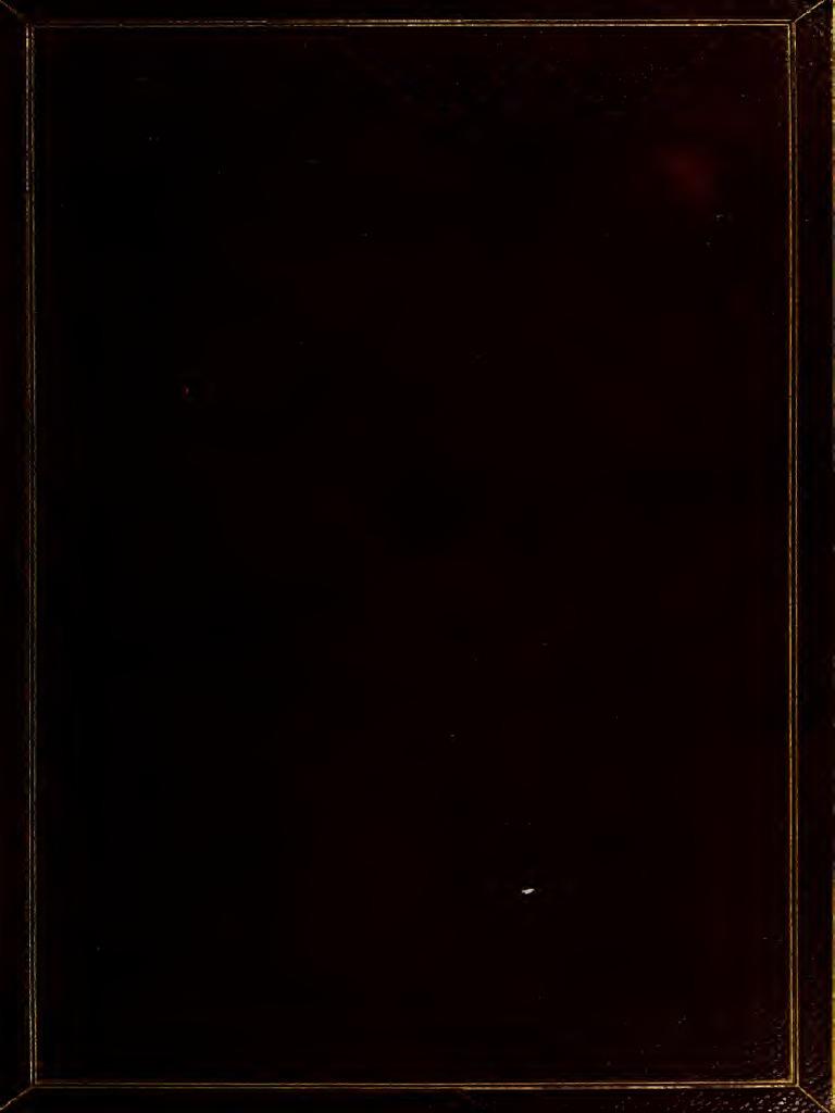 e2ddf126f17 Natural Ab Origin a 00 Hay w