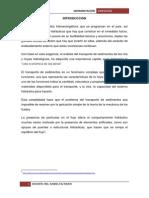 Sedimentación-segundo Informe Final