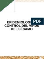 Epidemiologia_y_control_del_virus_del_sesamo._Luis_Gonzalez_Segnana_et_al._2012.pdf