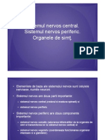 Sistemul Nervos Organele de Simt