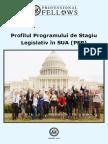 Profilul Programului PFP