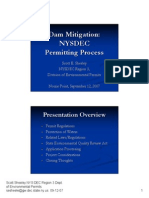 Dam Mitigation