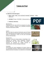 Trabajo de Final-diseño Org. (1)