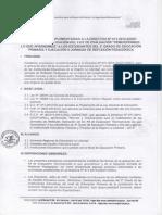 Precisiones Complementarias de Directiva.